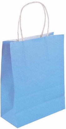 Baby blue Bags with Handle