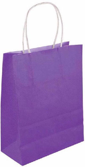 Purple Bag with Handles